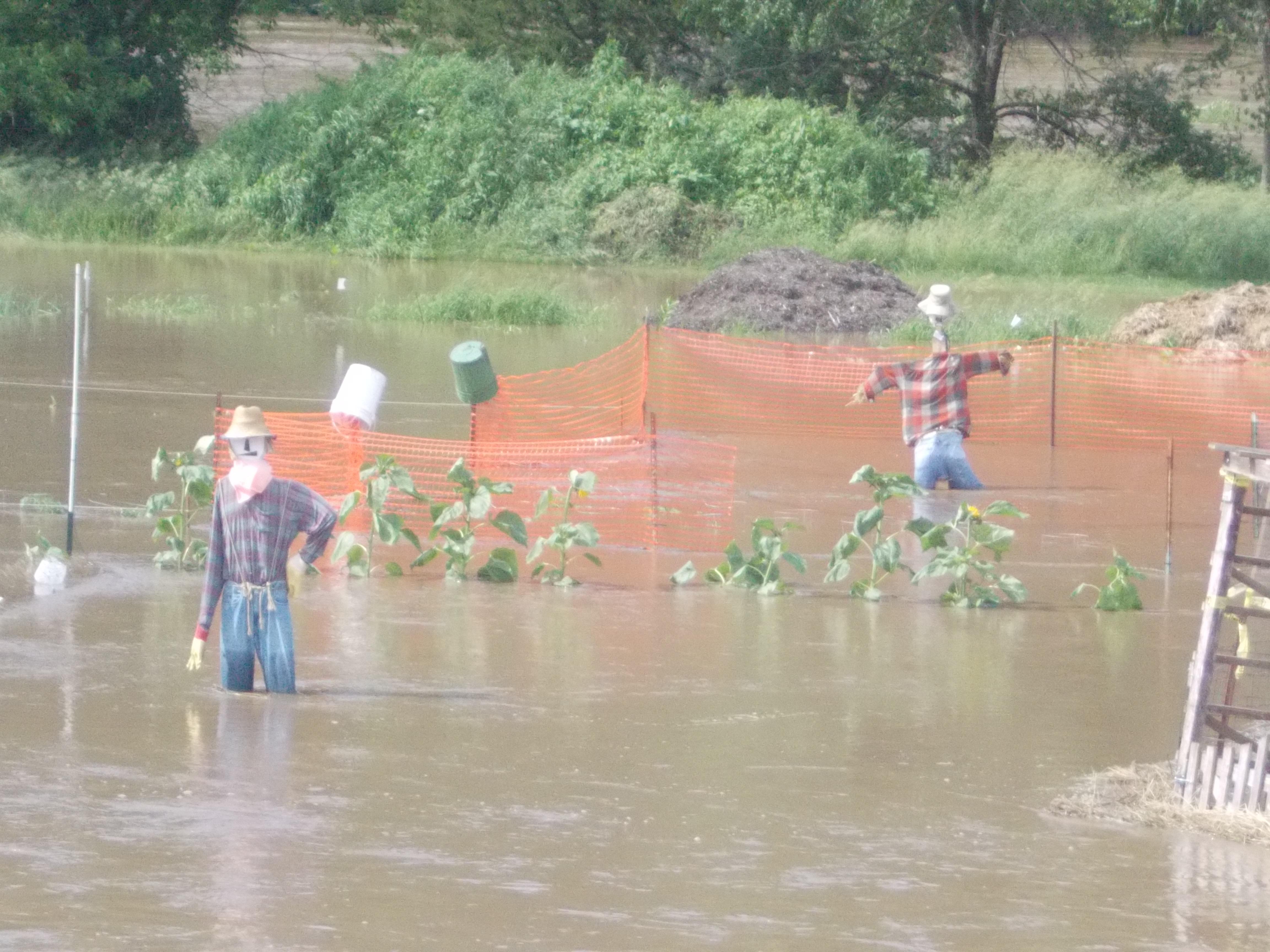 flood62313 006