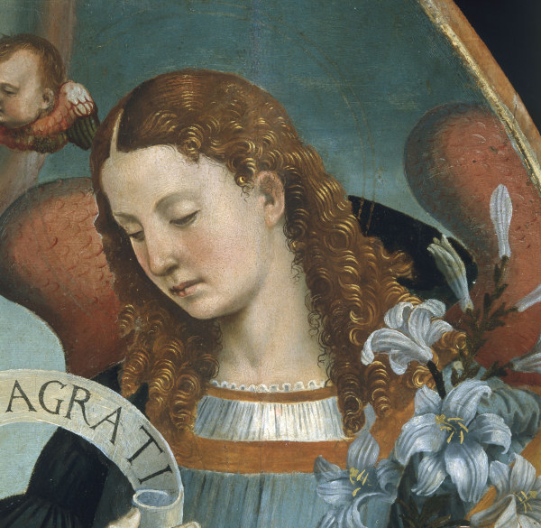 "Luca Signorelli, ""Head of Archangel Gabriel."""